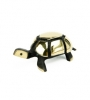 6039 - Walter Bosse Turtle - 18 mm