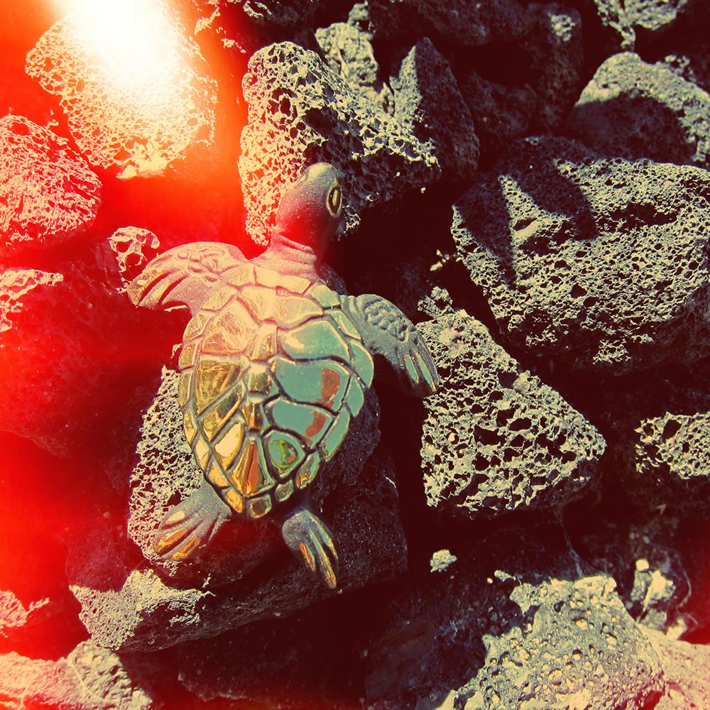 Walter Bosse Turtle