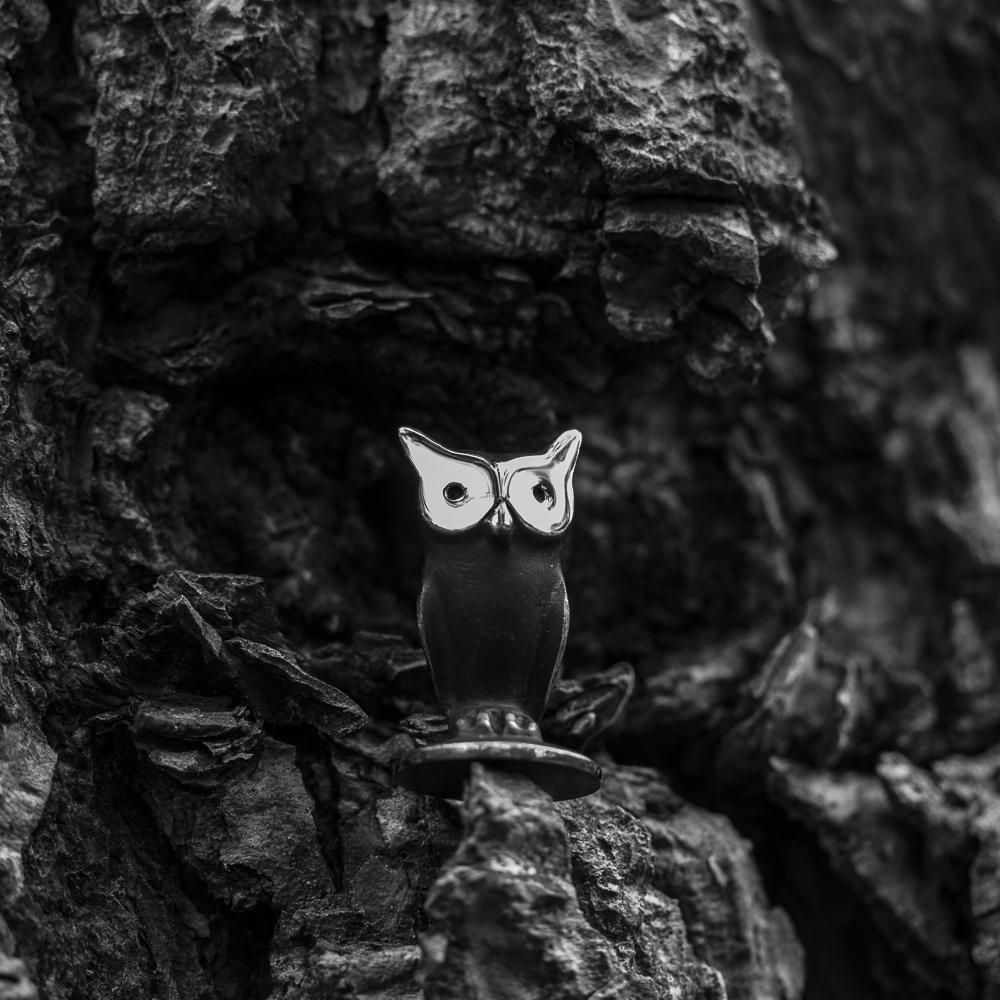 Walter Bosse owl