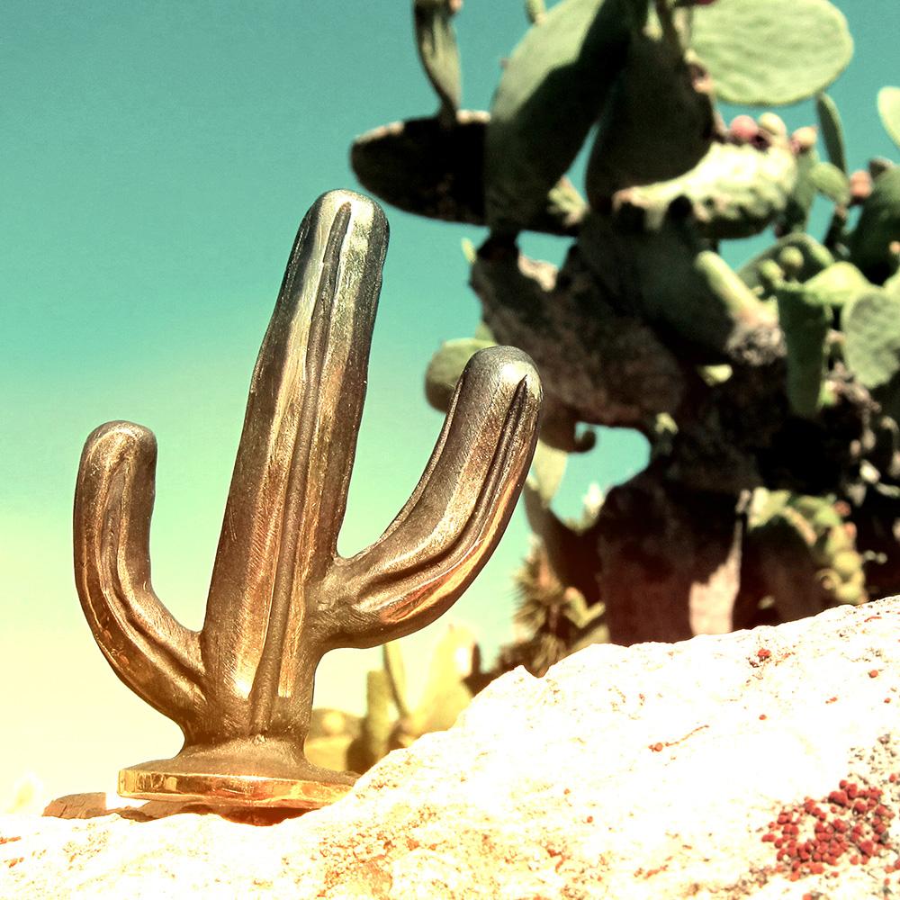 Walter Bosse Cactus